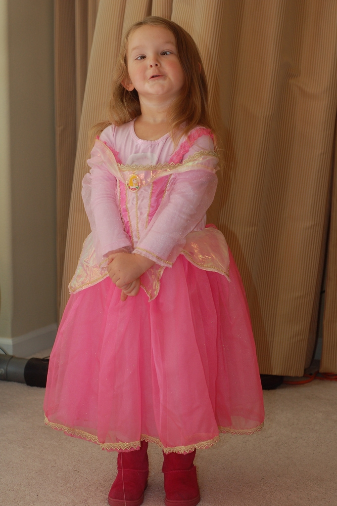 Princess ham