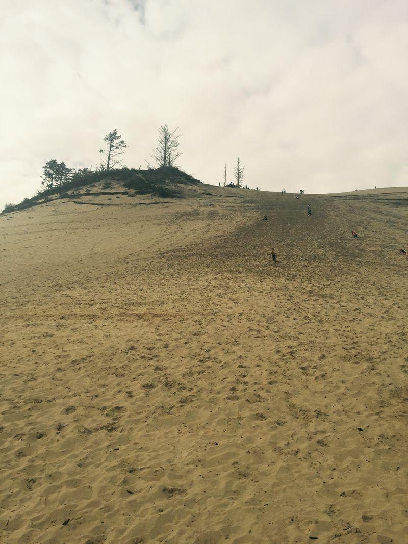 Cape Kiwanda Hill